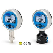 adt681is-10-gp100-dl-gauge-pressure-atex